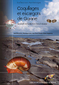 Coquillages et escargots de Guyane - Seashells and snails from French Guiana